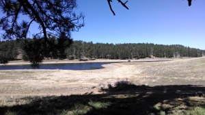Lake in Mt Laguna meadows