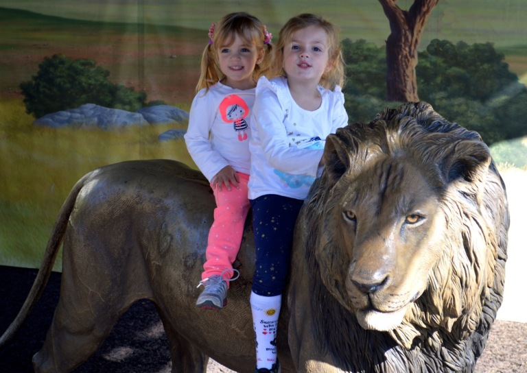 My two grand daughters at the Zoo.  Taken with a Nikon DSLR