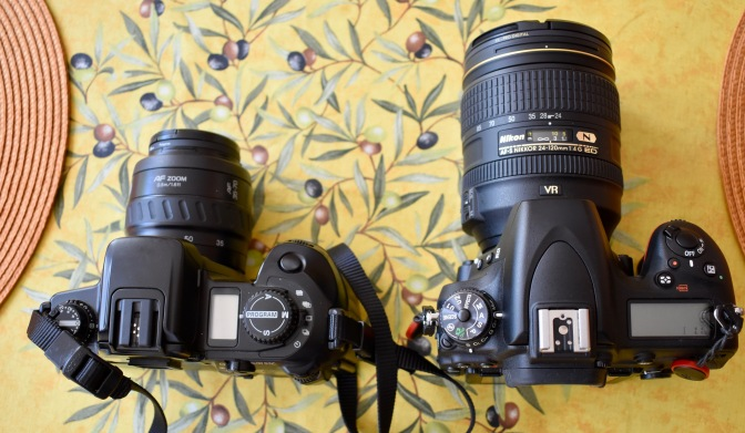 Sony A7iii After 6 Weeks & compared to Nikon D750 & D5500