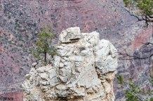 South rim trail-0639